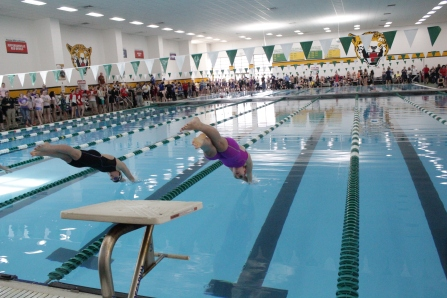 Caroline Elliott dives in the pool for the 100 yard freestyle.